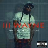 lil wayne she will